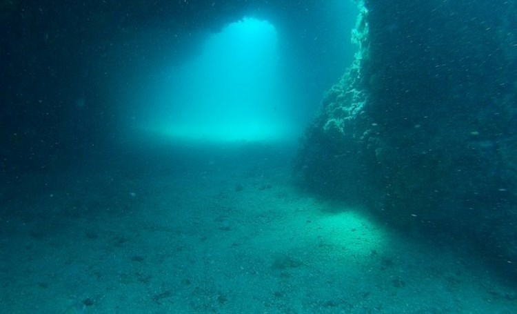 Diving in Istria