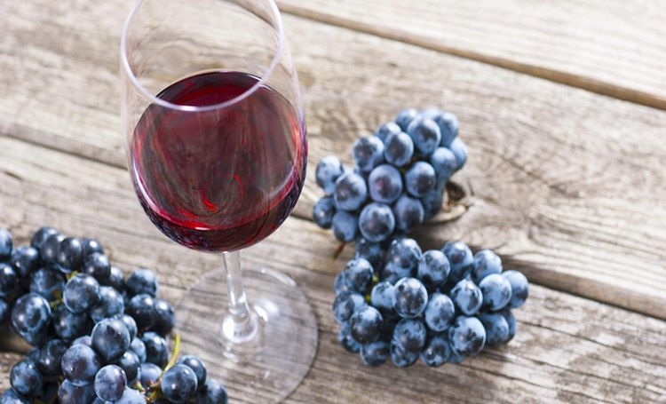 15 Best Istrian wines