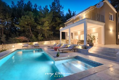 This luxury villa with pool is surrounded by a forest and offers a lot of privacy