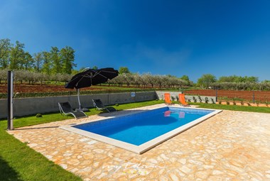 The pool in this beautiful villa is surrounded by olive groves