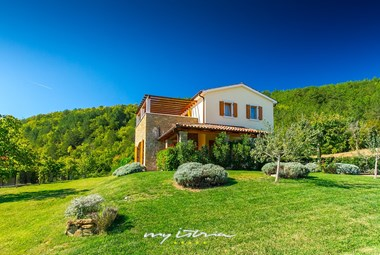 Villa Penisola with carefully tended garden in a quiet area near Buzet