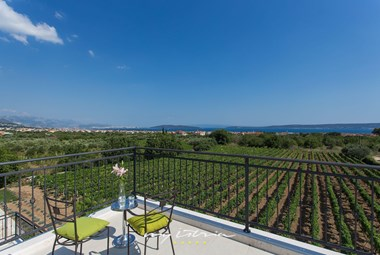 Panoramic view of the beautiful vineyard from the balcony of villa Mir