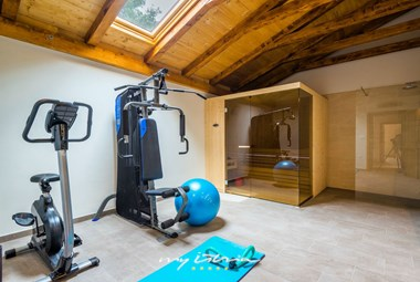 Private gym with a modern sauna and a separate shower on the ground floor of Villa Dumina