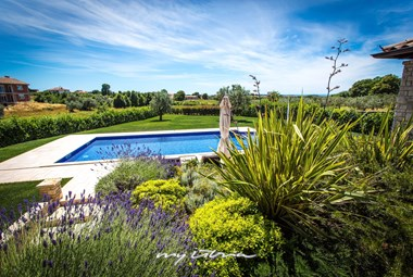 Villa´s private pool surrounded by beautiful garden