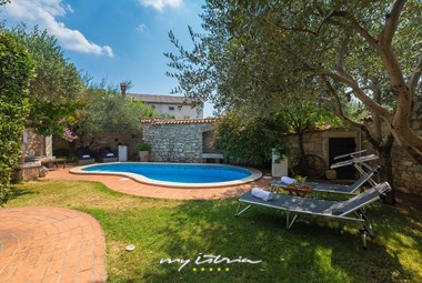 Private pool surrounded by olive trees in Villa Edi near Pula