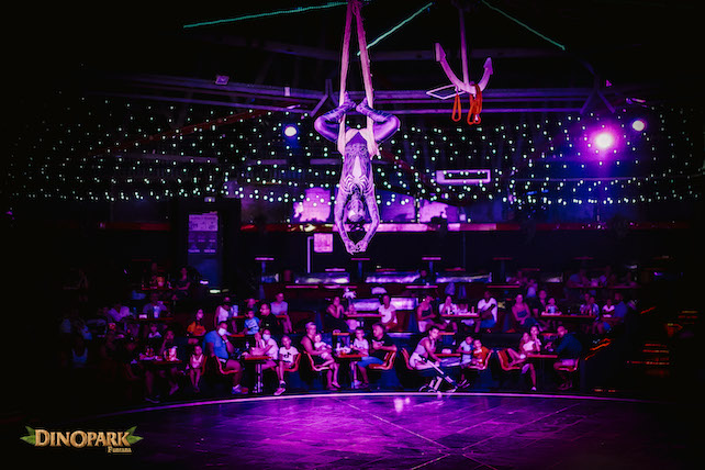 show-program-of-acrobats-and-artists-in-a-dark-arena-in-Dinopark-Funtana