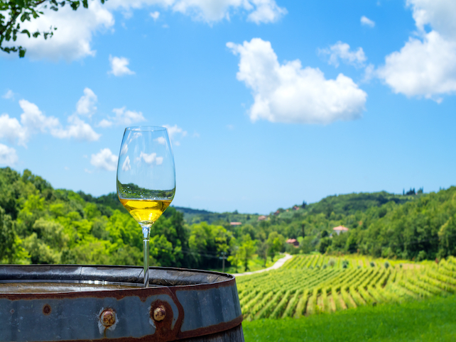 a glass of white wine on a barrel and view over green vineyard, hills and sky
