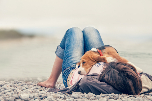 barefoot-girl-in-jeans-lying-on-a-pebble-beach-with-a-beagle-resting-on-her