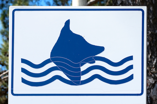 white-blue-sign-with-stripes-and-a-dog-simbol-singalising-a-dog-friendly-beach