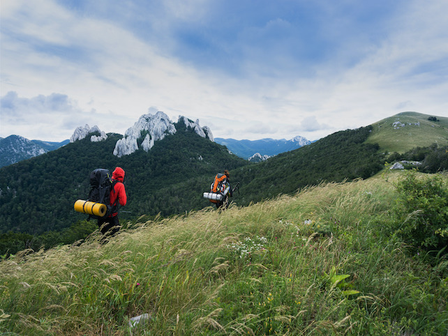 Two mountain hikers with backpacks on an alpine pasture hiking towards the top