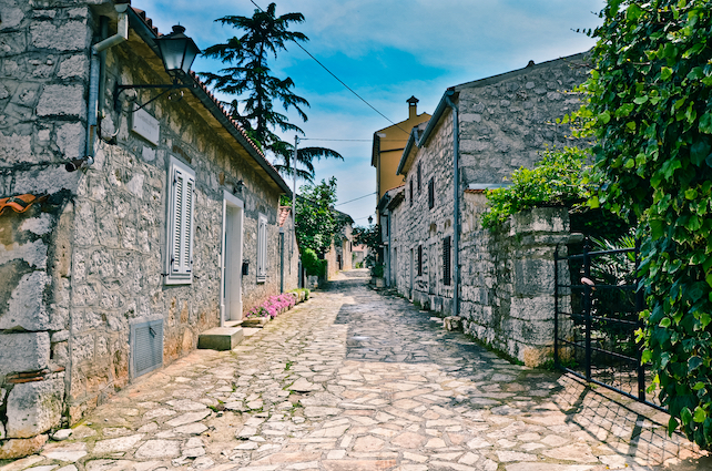 a-cobble-street-in-Vrsar-with-some-greenery-on-both-sides-and-small-stone-houses-left-and-right